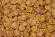 Sojaflocken Proteinflocken BIO 2,5 kg von DAVERT