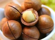 Macadamianüsse BIO 1 kg