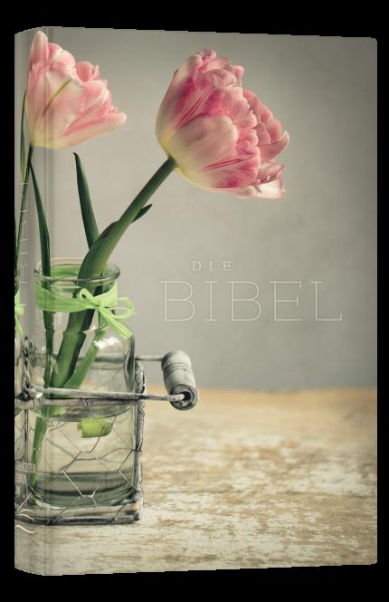 Schlachter 2000 Taschenausgabe mit Parallelstellen farbiger Einband Tulpen
