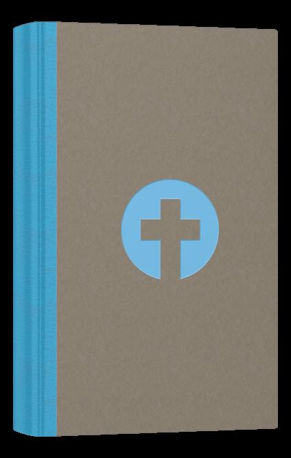 Schlachter 2000 Taschenausgabe mit Parallelstellen farbiger Einband