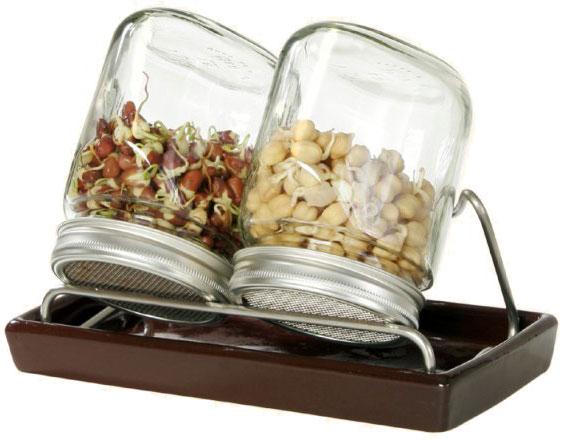 Eschenfelder Sprossensystem mit 2 Gläsern, Abtropfgestell + Schale braun