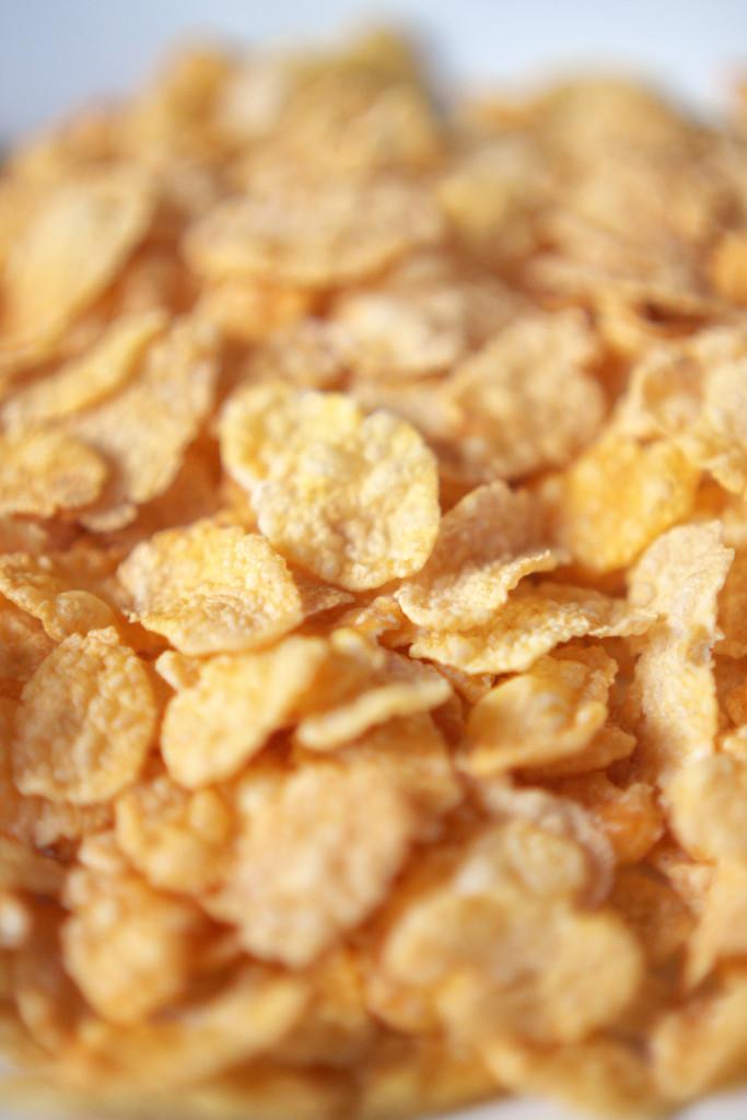 Cornflakes natural BIO 10 kg glutenfrei