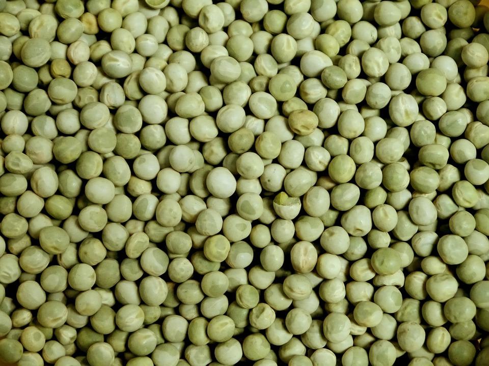 Grüne Erbsen BIO 5 kg von DAVERT